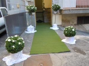 all_matrimonio_eligio_015